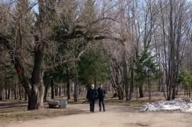 Парк им.Гагарина, park-6194