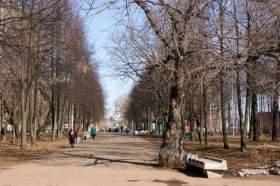 Парк им.Гагарина, park-6195