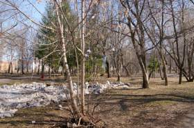 Парк им.Гагарина, park-6198
