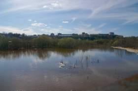 Весна. Река Вятка. Половодье., polov-6383