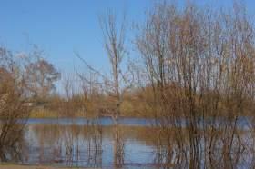 Весна. Река Вятка. Половодье., polov-6385