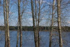 Весна. Река Вятка. Половодье., polov-6395