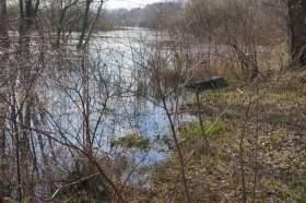 Весна. Река Вятка. Половодье., polov-6400