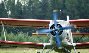 Праздник в честь для авиации на аэродроме Кучаны