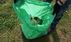"""""""Блогеры против мусора"""", blogery-05360"""