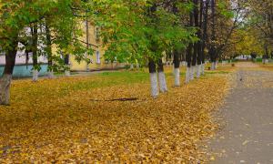 Осенние зарисовки, osen2-00290