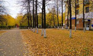 Осенние зарисовки, osen2-00291
