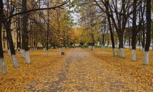 Осенние зарисовки, osen2-00293