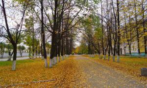 Осенние зарисовки, osen2-00294