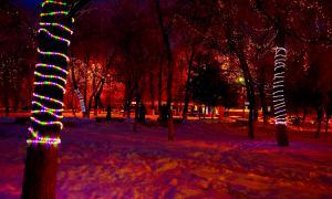 Зима. Театральная площадь.
