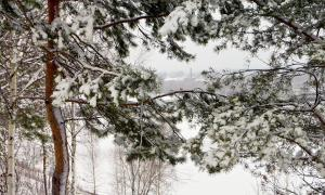 Зима. Вятка, rvyatka-013