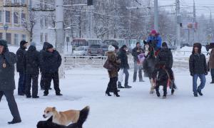 Пикет в Кирове, piket-017