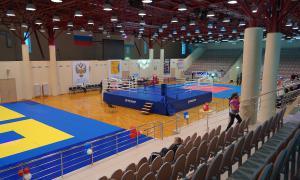 Чемпионате области по кикбоксингу, Чемпионате области по кикбоксингу