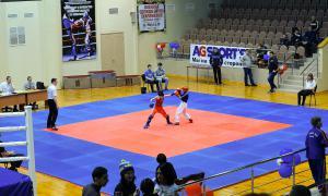 Чемпионате области по кикбоксингу, kickb-025