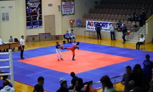Чемпионате области по кикбоксингу, kickb-026