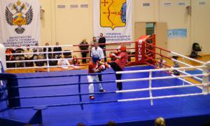 Чемпионате области по кикбоксингу, kickb-027