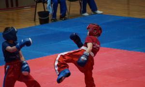 Чемпионате области по кикбоксингу, kickb-041