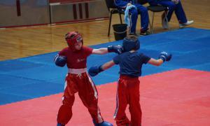 Чемпионате области по кикбоксингу, kickb-044