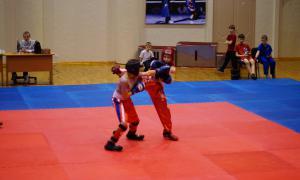 Чемпионате области по кикбоксингу, kickb-047
