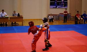 Чемпионате области по кикбоксингу, kickb-048