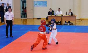 Чемпионате области по кикбоксингу, kickb-055
