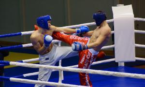 Чемпионате области по кикбоксингу, kickb-063