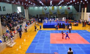 Чемпионате области по кикбоксингу