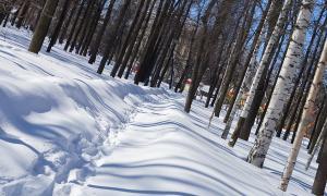 Прогулка по Вятке, Фотозарисовка. Весна, 30 марта