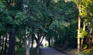 Короткая прогулка по Вятке, prog-015