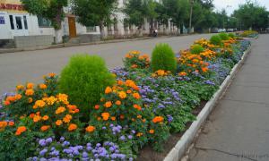 Фотопрогулка. Слободской, slob-096