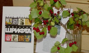 """Выставка """"FONТАЗИИ шрифтов"""", ffont-012"""