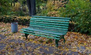 Осень. Ботанический сад, botsad-007