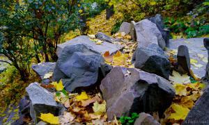 Осень. Ботанический сад, botsad-010