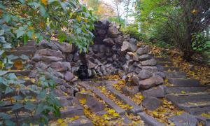 Осень. Ботанический сад, botsad-012