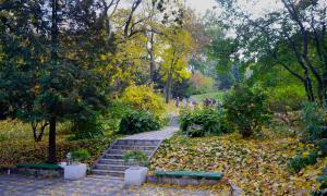 Осень. Ботанический сад