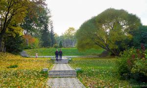 Осень. Ботанический сад, botsad-016