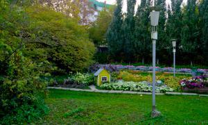 Осень. Ботанический сад, botsad-045