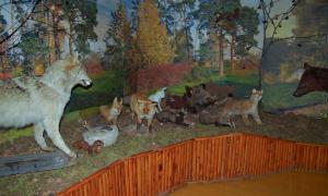 Инфо-тур по Вятскому краю. Нолинск, info-nolinsk-010