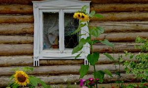 Инфо-тур по Вятскому краю. Вятские Поляны, info-vpolyany-77795