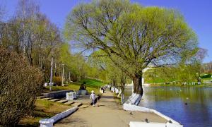 Весна. У пруда, prud_vesna-008