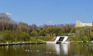 Весна. У пруда, prud_vesna-010