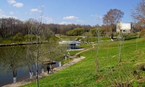 Весна. У пруда