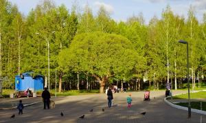 Парк Победы. Киров, park_pobedy_2017-06-03-07
