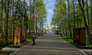 Парк Победы. Киров, park_pobedy_2017-06-03-18