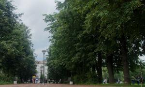 ParkKirova-26-08-2017-027