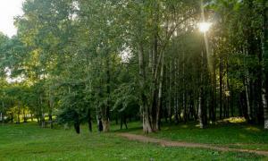 Прогулка по парку Кирова, Park_2018-08-12-005