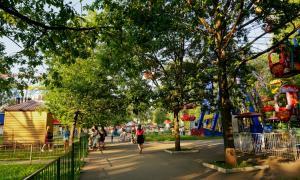 Park_2018-08-12-010