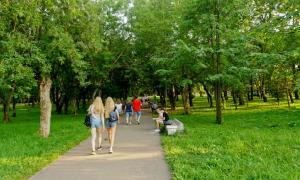 Прогулка по парку Кирова, Park_2018-08-12-013