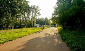 Прогулка по парку Кирова, Park_2018-08-12-015
