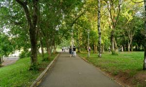 Прогулка по парку Кирова, Park_2018-08-12-020